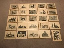 Rare Collection of 25 Vintage Prints - WORK BY CARL E. AKELEY - Taxidermy Art