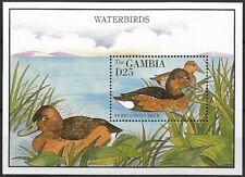 Gambia 1995 MNH MS, Water Birds, Ducks, Ferruginous Duck   (C3n)