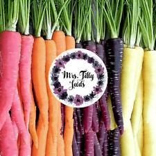 Regenbogen Möhren Mix 100 Samen alte Sorte Bio gesund süß sehr beliebt Karotten