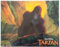 "ORIGINAL 1999 LOBBY CARD 14"" x 11"" - ""TARZAN"" - WALT DISNEY ANIMATION - CARD #2"