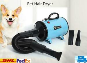 ✅2000W Dog Pet Grooming Hair Dryer Removable Pet Hairdryer 3 Nozzle 220V/110V✅