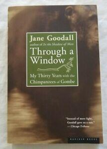 Jane Goodall  Through A Window