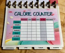 Calorie Counter Dashboard Insert 4 use with Happy Planner