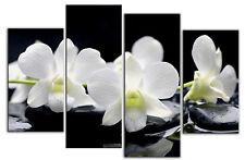 LARGE FLORAL CANVAS ART PICTURE WHITE ORCHIDS BLACK STONES  SPLIT 4 PANEL 100cm