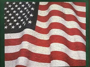 1000 Piece Springbok Jigsaw Puzzle Stars And Stripes Forever Flag COMPLETE