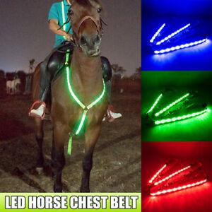 LED Waterproof Horse Chest Belt Harness Flashing Belt Gear Equestrian Suppl