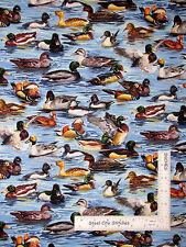 Duck Loon Mallard Bird Cotton Fabric Fabriquilt Inc American Wildlife - Yard