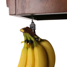 Unique Fruit Holder|Best #1 Hook Stand Alternative|Can Hold A Single Banana