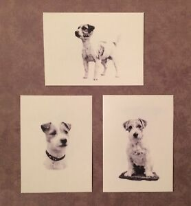 Set of 6 or 12 Handmade Blank Jack Russell Terrier Dog Print Note Cards