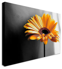 Yellow Flower Canvas Wall Art Picture Print