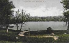 Sackett Lake near Monticello NY nice postcard postally used in 1919