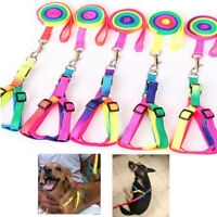 Adjustable Pet Nylon Harness With Lead Leash Traction Colorful Rope Dog Cat