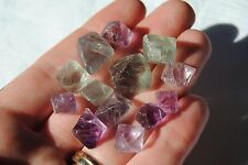 Fluorite Octahedron ~ 13pcs - 30 Grams ~ Purple and Green ~ Free Postage