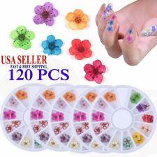 120PC 12 Colors Real Dried Flower UV Gel Nails Art 3D Acrylic Decor Manicure DIY