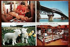 Aotea Greenstone & Sheepskin Factory, Takanini, Auckland, New Zealand. Post Card
