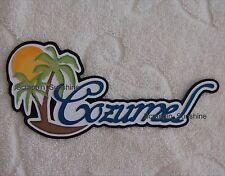 COZUMEL Vacation Cruise Disney Scrapbook Die Cut Title Paper Piece - SSFFDeb