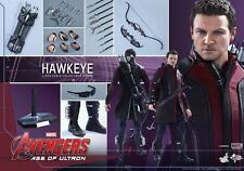 Hot Toys Hawkeye Avengers Age of Ultron MMS289 Jeremy Renner New/Sealed Shipper!