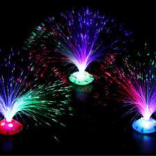 LED Fiber Optic Light Multi-color Changing Lamp Home Decor For Kid Gift Toy
