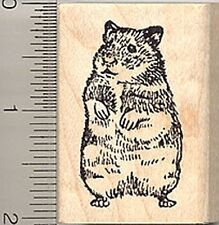 Hamster Rubber Stamp, Syrian Golden Breed, Hampster E4005 WM