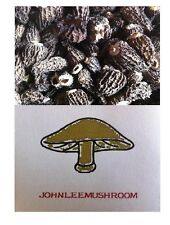 Wild Morel dried morchella conica 60 grams