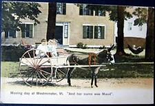 WESTMINSTER VT~1900's MOVING DAY~GIRL & BOY ON DONKEY CART ~ Her Name Was Maud