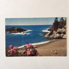 Pacific Ocean Seacoast Unposted Postcard