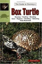 Box Turtles by Jordan Patterson (1995, Paperback)