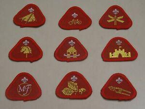 Cub Scout Proficiency/Activity Badges (1990s)