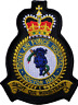Raf Ospedale Nocton Hall Reale Air Force Mod Crest Patch Ricamato