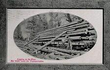 Oregon-Washington,Logging,Picture Frame Border,Used,Flag Cancel,Corvallis,1911