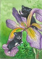 PRINT OF ACEO PAINTING RYTA FAIRY TUXEDO CAT BLACK KITTEN ANGEL IRIS GARDEN FOLK