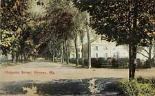 Brewer Maine Holyoke Street Scene Historic Bldgs Antique Postcard K28350