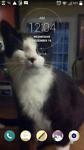 The Winkey Cat