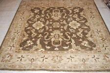 6' SQUARE BROWN Chobi Peshawar Hand Woven  Rug