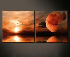 Amapola Wall Imagen Imágenes Lienzo Flor de Rojo Naranja Sol sueño XX Decoración