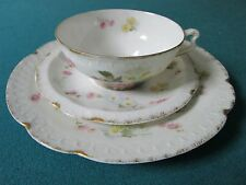 "Rosenthal Bavaria ""Carmen"" Pattern, TRIO cup/saucer/plate,gorgeous flowers [100]"