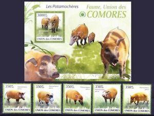 Comoros 2009 MNH MS+5v, River hogs, wild Animals