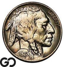 1929 Buffalo Nickel, Nice Subtle Color, Choice AU++