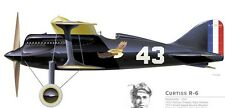 R-6  Curtiss USA Racing Airplane Mahogany Kiln Dry Wood Model Small