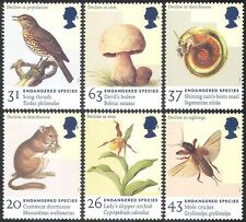 GB 1998 Orchid/Fungi/Shell/Insect/Rodent/Birds/Nature/Conservation 6v set n18250