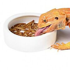 Ceramic Dish Food Water Bowl Escape Proof For Reptile Small Pet Animals Supplies