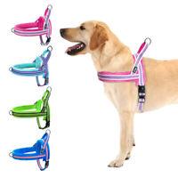 Reflektierende Hundegeschirr für große Hunde Kein Zug Fleece Gepolstert XS S M L