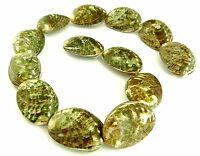😏 Grüne Abalone Perlen ganze Muschel-Schale Muschelperlen Strang RARITÄT 😉