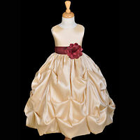 Champagne Wine Flower Girl Dress Pageant Taffeta Gown Lg 2T 3T 4T 5T 6 7 8 9 10