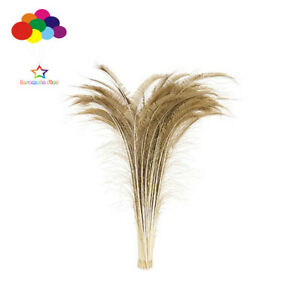 100 pcs Peacock sword Bleach brown Dyed feathers 10-32inch/25-80cm wedding decor