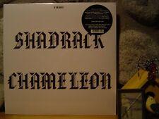 SHADRACK CHAMELEON LP/1973 Iowa/Melancholic Rural Rock/Neil Young/Acid Archives