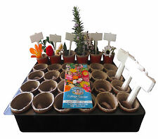 Kids Plant Growing Kit Kids Flower Planting Kit Eco Plant Kit Kids Gardening Kit