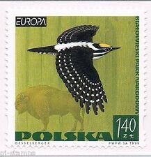 1999 Polen 3763 Europa CEPT Nationale parken