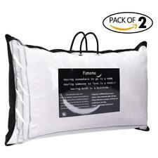 2pcs Down Bed Pillows Standard Queen Size Feather Goose Pillows Bedding Set