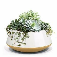 Large Succulent Planter Plant Pots, Ceramic Indoor Outdoor Garden Pot w/ Drainag